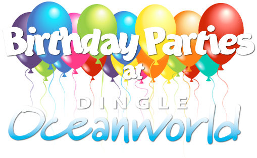 Birthday parties at Dingle Oceanworld Aquarium