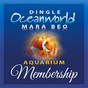 Protected: Aquarium Membership