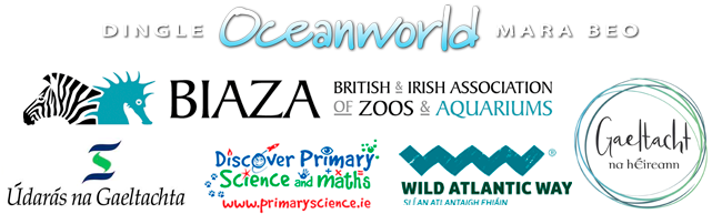 Dingle Oceanworld affiliates