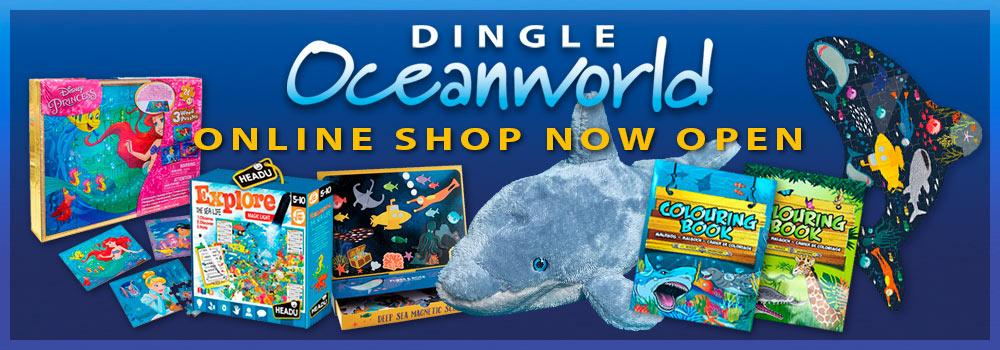 Dingle Oceanworld online shop